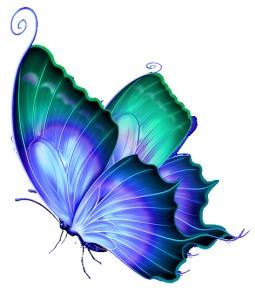 ButterflyBig